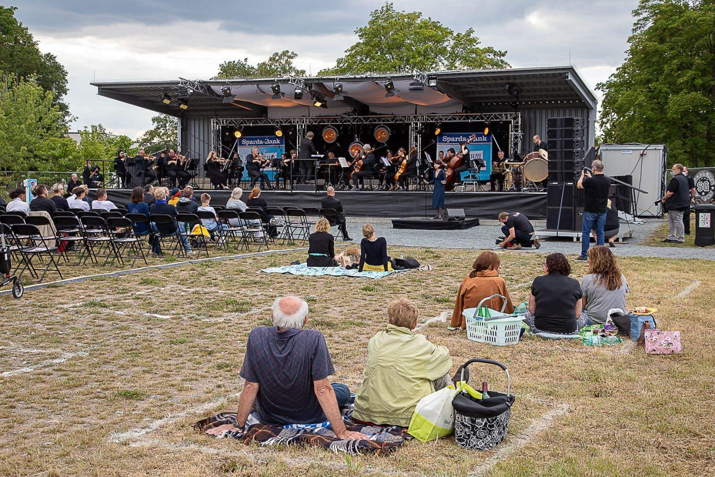 Statt Hafensommer: Würzburger Kulturpicknick auf dem Ex-LGS-Gelände