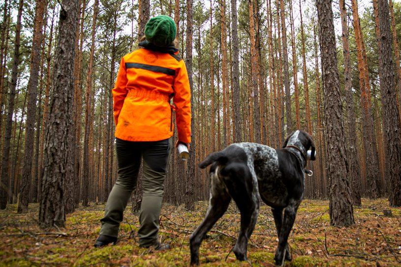 Wald Klimawandel Bayern