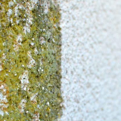 Fassaderein Fassadenreinigung