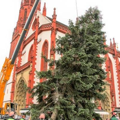 Weihnachtsbaum Wuerzburg