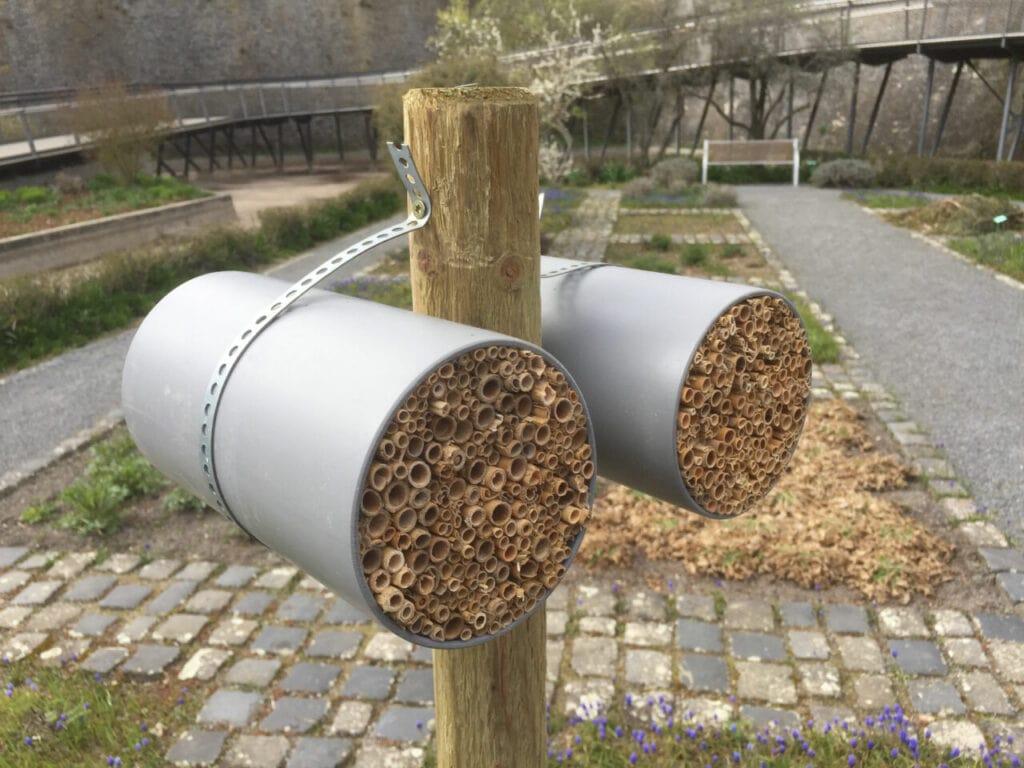 Nisthilfen-Insekten-Würzburg