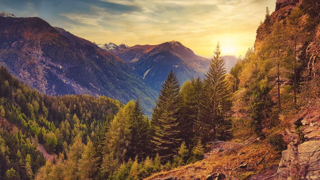 Mit Greser Reisen ins herbstliche Tirol