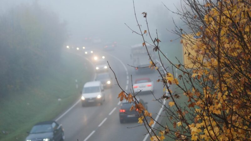 auto-nebel
